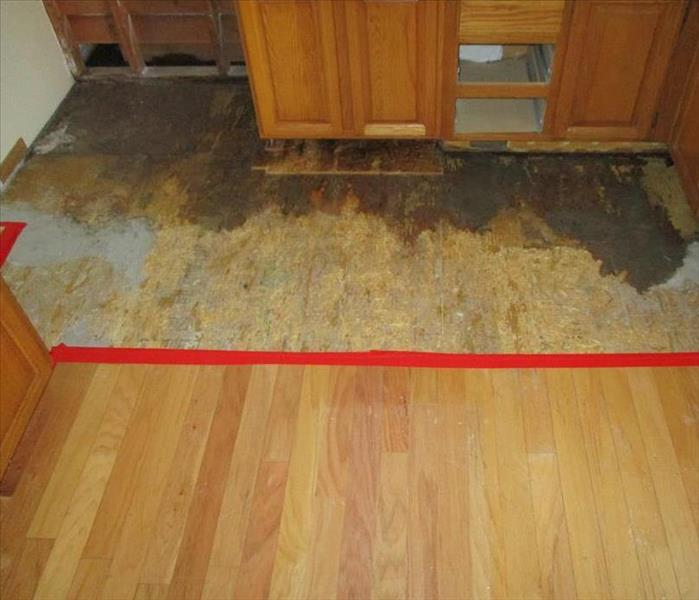 Water Damage Outlines