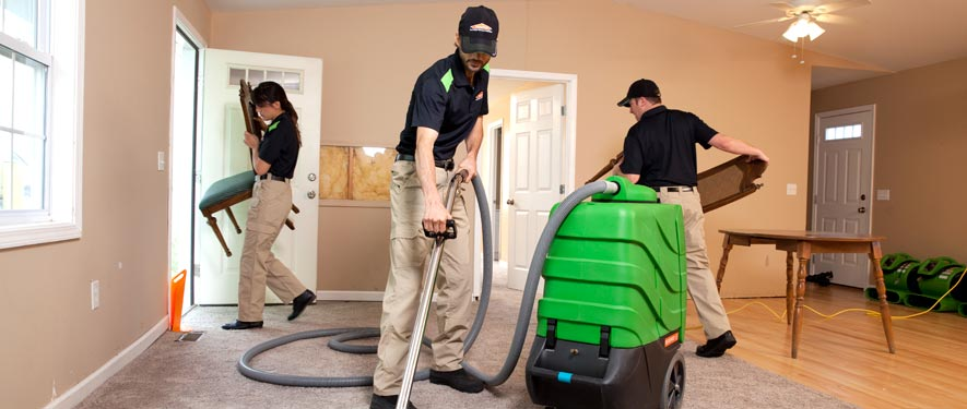 Novato, CA cleaning services